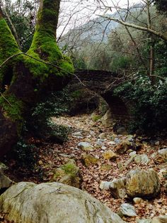 Exploring the monopatia of Pelion....on the way from kala nera to milies