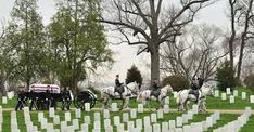 Image result for arlington national cemetery