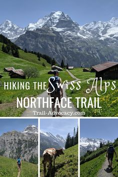 This hike follows along a ridge through tiny villages and across streams with a surreal mountain backdrop.  Check out my photo guide!  This is a MUST DO hike in the Swiss Alps.  #switzerland #hiking #travel #mountains #lauterbrunnen #northface #outdoors #cows #interlaken