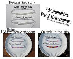 Our Sun-sational Sun