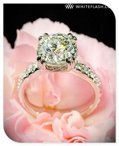 One of the most beautiful rings I've ever seen!! vintage wedding rings