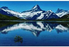 Lake bachalpse is located at first and grindel Wald inn Switzerland I was there I in my dreams #nicekicks #hotday #happynight #cooldad #hotsummer #boots #summer #entrepreneurship #grind #hustle #learn#education #startup #succees #successquotes #build #startuplife #businessowners #businessman #businesswoman #businesslife #entrepreneurlifestyle #goodlife #entrepreneur#motivate 0  #businessowners #motivation #goodwill #goodtimes #happymoments