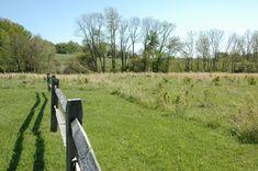 Big Brook Park