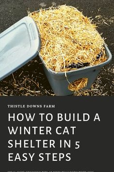 How To Build a Winter Cat Shelter in 5 Easy Steps - Thistle Downs Farm - Learn how to build a shelter for outdoor or feral cats who may have no other way to escape from bad - Outdoor Cat Shelter Diy, Outside Cat Shelter, Outside Cat House, Feral Cat Shelter, Feral Cat House, Goat Shelter, Rain Shelter, Outdoor Cats, Feral Cats
