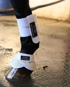 White and black husk horse boots Smiling People, Smile Pictures, Horse Boots, Horse World, Equestrian Outfits, White Horses, Saddle Pads, Horse Care, Show Horses