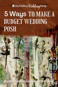 Some different ideas for making your budget wedding look posh. Tips for saving money but also making your wedding look more upscale with color, lighting, details, etc. Number 1 is ... see them on the MyOnlineWedding Help.com blog. Wedding Budget Planner, Wedding Planning Tips, Wedding Tips, Wedding Venues, Average Wedding Costs, Different Wedding Ideas, Guest Book Alternatives, Ceremony Decorations, Wedding Looks