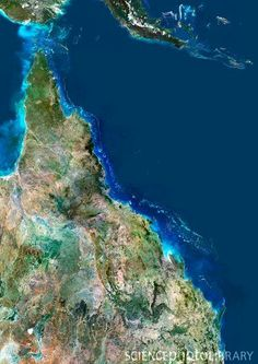 Brisbane is right in the South East corner of Queensland. Satellite Image of Great Barrier Reef, Australia Photographic Print Queensland Australia, Australia Travel, Space Australia, Tasmania, Airlie Beach, Land Of Oz, Earth From Space, Great Barrier Reef, Wonders Of The World