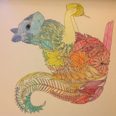Johanna Basford | Picture by Kirsty Mackie | Colouring Gallery