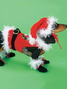 Miscellaneous Crochet - Easy Crochet Patterns - Santa Dog Costume - Easy Crochet Pattern