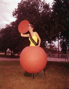Florida Citrus Queen LaVoyce Leggett popping out of an orange in Homestead, Florida Photo by Ted Newhall. Homestead Florida, Vintage Florida, Pop Out, Native Art, Homesteading, Ted, Memories, Queen, Orange