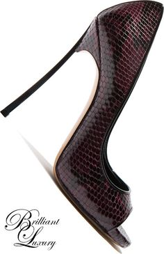 Brilliant Luxury * Casadei 'Blade' Fall 2015