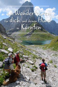 Du planst einen Urlaub mit Hund in Österreich? Bei uns in Kärnten findest du tolle Wandertouren mit Hund und hundefreundliche Ausflugsziele, wie den Wolayersee.  Auch hundefreundliche Hotels gibt es zur Genüge - deinem Urlaub mit Hund in Kärnten steht nichts im Weg! Wanderlust, Hiking Trails, Paths, Roadtrip, Vacation, Mountains, Nature, Hotels, Travel