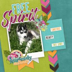 NEW RELEASE & BUFFET from Connie Prince Layout created using Good Vibes Only Collection. On sale for a limited time, the kit is $2 and addon packs $1 each through 3/5, these are big deals, don't miss out Good Vibes Only, Free Spirit, Buffet, Prince, Layout, Kit, Create, Collection, Page Layout