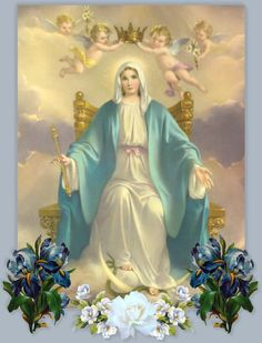 virgin mary | ... help and strength from heaven the birth of the virgin mary s son was