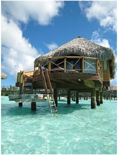 I have always wanted to go to Bora Bora and stay in one of these bungalows over the water. Bliss!