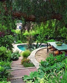 Exotische Pflanzen Terrasse Haus