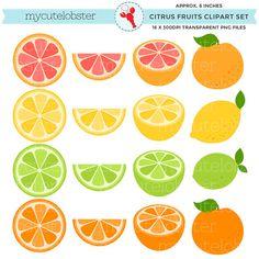 Citrus Fruits Clipart Set – clip art set of fruits, lemon, grapefruit, lime, ora… - Fruit Fruit Clipart, Crochet Bedspread Pattern, Fruits Drawing, Fruit Art, Cookie Designs, Teaching Materials, Classroom Themes, Grapefruit, Embroidery Designs