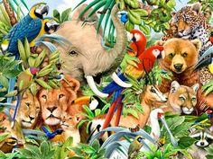 Jungle Animals One HD Desktop Wallpaper