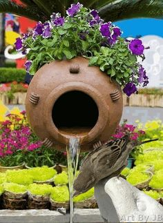 Cool Garden Photos For A Cool Spring Inspiration - World inside pictures Beautiful Rose Flowers, Beautiful Gif, Beautiful Birds, Beautiful Gardens, Beautiful Monday, Indoor Vegetable Gardening, Organic Gardening, Gardening Tips, Gardening Vegetables