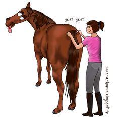Les zones à gratouilles chez les chevaux : http://soon-a-horse.blogspot.fr/2014/11/comment-jai-trouve-les-zones.html