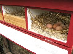 How to build external nest boxes for your chicken coop