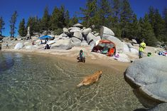 Chimney Beach is one of the best Lake Tahoe beaches away from the crowds. A Lake Tahoe dog friendly beach, Chimney Beach has a lot to offer - view photos and description.