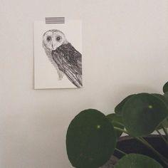 Het duurde even maar nu is de uil ook op kaart beschikbaar. Beperkte oplage! Wil je m verkopen in je shop? Mail me gerust even info@mooiezootjes.nl Hij verschijnt binnenkort ook in de webshop #owl #illustration #postcard #art by mooiezooitjes