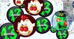 267052 nickname pumba agarabi.com game score - Player: pumba / Score: 2670520 - pumba saved mass 267052 agarabi.com best agar.io pvp server agario private server 2017