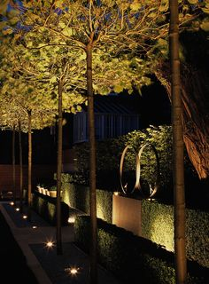 When designing your backyard, don't forget to carefully plan your lighting as well. Get great ideas for your backyard oasis here with our landscape lighting design ideas. Outdoor Tree Lighting, Outdoor Trees, Backyard Lighting, Lighting Ideas, Garden Lighting Trees, Modern Landscaping, Outdoor Landscaping, Front Yard Landscaping, Landscaping Rocks