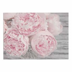 KESS InHouse Suzanne Harford 'Pink Peony Flowers' Floral Photography Dog Place Mat, x -- You can get more details by clicking on the image. (This is an affiliate link and I receive a commission for the sales) Peony Drawing, Peony Painting, Peonies And Hydrangeas, Pink Peonies, Peonies Garden, Peonies Bouquet, Floral Photography, Fine Art Photography, Peony Flower