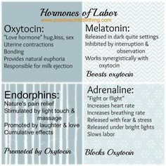 Hormones of labor. Goal: reduce adrenaline production, increase oxytocin production for shorter labour. Student Midwife, Doula Business, Birth Affirmations, Birth Doula, Pregnancy Labor, Childbirth Education, Midwifery, Breastfeeding, Just In Case