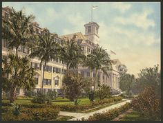 The Royal Ponciana, Palm Beach, Resorts Hotels Florida Palm Beach, 1900. Reprinted from vintage colorized photochrom travel postcard. These are