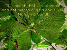 Health = real wealth, we think so!