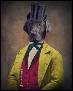"""In the 1880's, Oscar was the proud owner and operator of the """"The Great Western Rubber Ball Company"""". Black Lab Art  Black Labrador  Animal by The Lonely Pixel Photography on Etsy, $30.00"""