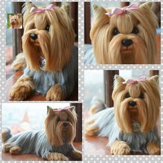 Custom Yorkshire Terrier Artist Needle Felted Dog Sculpture Dog Portrait Sculpture of your pet Yorkie - pet replica - stuffed dog. Needle felted sculpture. I create needle felted sculptures (pet replicas) in the technique of dry felting wool for over 5 years.   eBay!