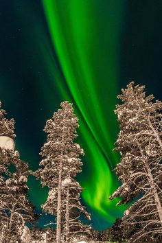 In northern Lapland the lights shine about every other clear night between September and March. In southern Finland they are visible on about 10-20 nights a year Photo: K. Chae