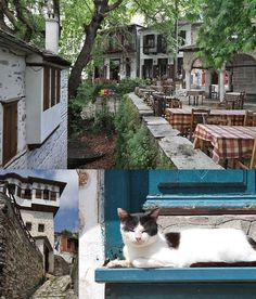 Pilion in ontoeristisch Griekenland - Yvonne van der Laan Learn Greek, Mount Olympus, Thessaloniki, Adventure Travel, Greece, Van, Roadtrips, Places, Greece Country