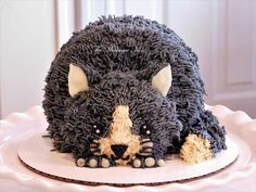 Cakes For Women, Cakes For Boys, Cupcakes, Cupcake Cakes, Cake Pops, Kitten Cake, Buttercream Cake Designs, Birthday Cake For Cat, Cross Cakes