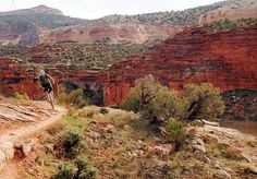 The Grand Valley Trails Alliance was formed a little over two years ago with the goal to bring together eight diverse trail-related groups.