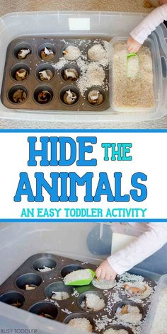 Hide the Animals: Qu