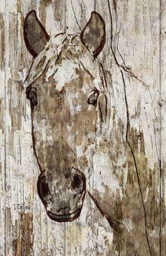 Lady Ann. Canvas Print by Irena Orlov