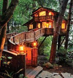 Casa na árvore – desejo e sonho   DEZ compassos