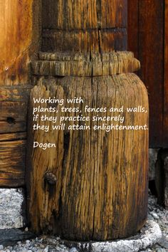 Dogen Zenji How To Attain Enlightenment by DMaCPhotography