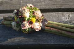 Asparagus, Vegetables, All Saints Day, Gifts, Crafting, Studs, Vegetable Recipes, Veggies