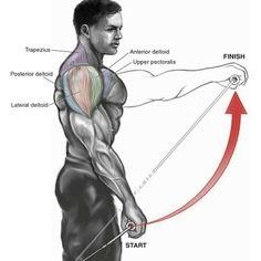 #shoulders #workout #gymlegends