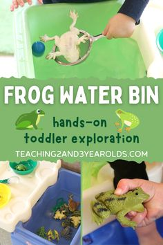This toddler frog activity is super easy to set up using a tub of water. Add squeezers and strainers for some fine motor strengthening! #toddler #frogs #spring #pond #water #finemotor #classroom #teacher #toddlerteacher #AGE2 #teaching2and3yearolds Frog Activities, Indoor Activities For Toddlers, Spring Activities, Hands On Activities, Infant Activities, Toddler Teacher, Toddler Fun, Toddler Preschool, Sensory Bins
