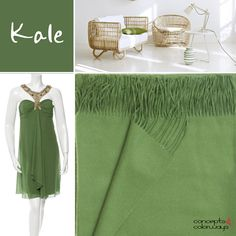 pantone kale, 2017 color trends, olive green, moss green, color trends, color for interiors