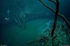Underwater River, Cenote Angelita, Mexico