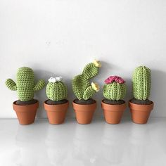 Amigurumi cactus is used in home decoration and presentations. Am . - - Amigurumi cactus is used in home decoration and presentations. Today we make cactus from Amigurumi toy models. Recently weave knit. Crochet Diy, Crochet Cactus Free Pattern, Crochet Flower Patterns, Crochet Home, Crochet Gifts, Crochet Flowers, Diy Crochet Cactus, Cactus Pattern, Sewing Patterns