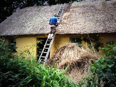 A Thatcher at work in Bunratty Village. Thatched Roof, Ancient Art, Ireland, Destinations, Artisan, House Styles, Places, Crafts, Travel